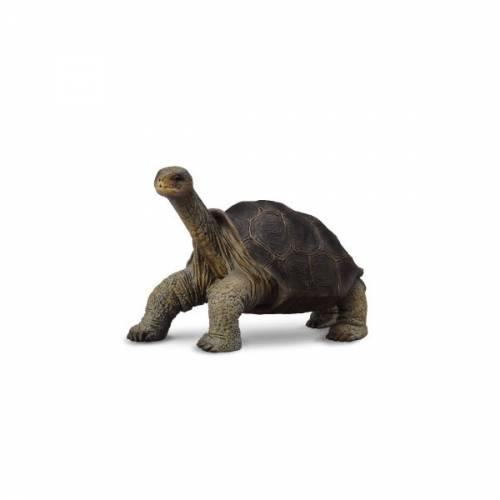 Figurina Broasca Testoasa din Pinta Island M Collecta